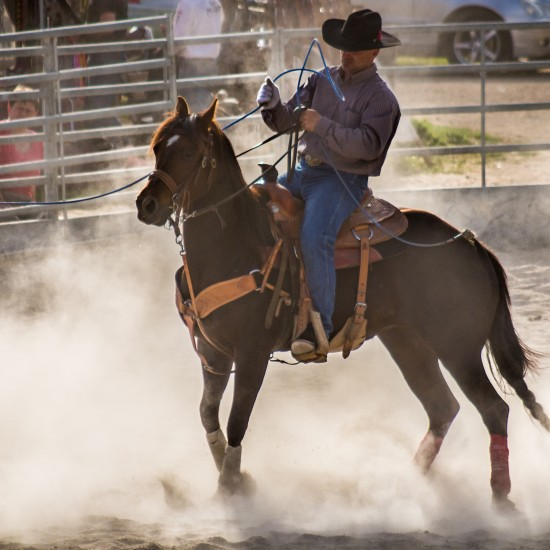 2. kolo Strabag Prorodeo Tour 2016 Halter Valley 5
